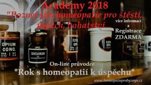 Academy 2018 or.