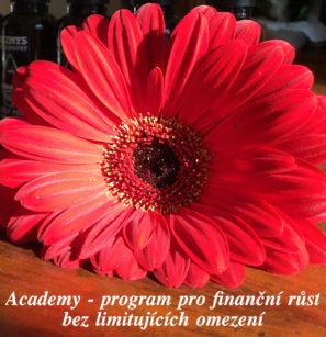 Byznys Academy