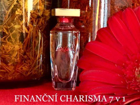 finanční charisma 7 v 1